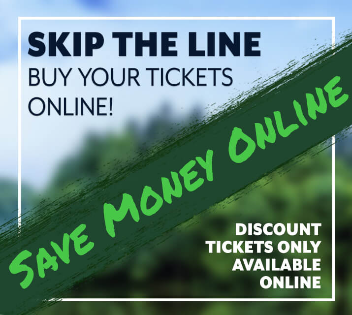 online ticket special rotator